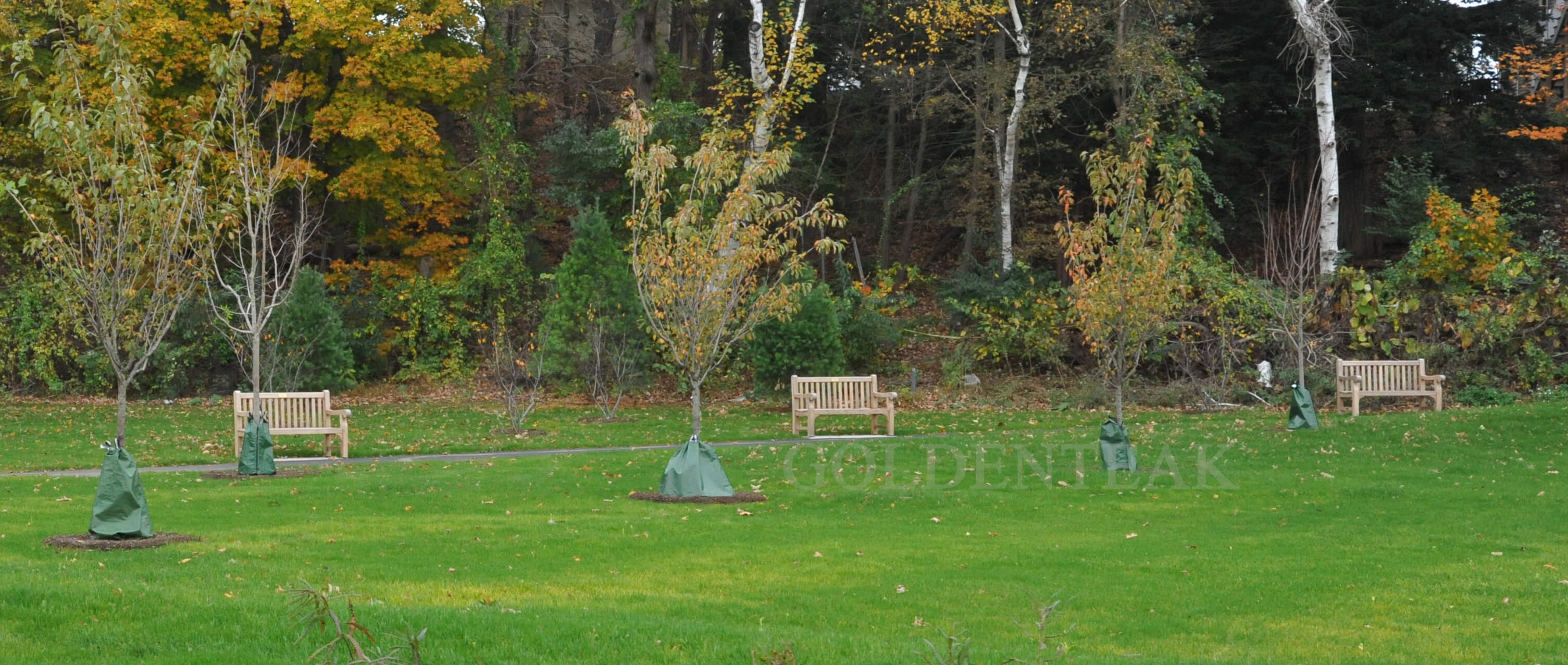 Goldenteak Teak Outdoor Furniture Institutional Sales