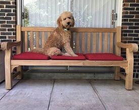 Teak Hyde Park 6 Ft Bench with Chester- Goldenteak Customer Photo